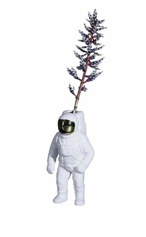 Starman white